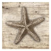 Wooden Star Framed Print