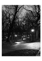 Central Park Night Stroll Framed Print