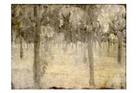 Vineyard Fine Art Print