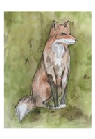 Fantastic Fox Fine Art Print