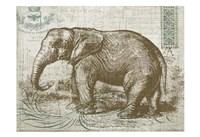 Elegant Safari Elephant 1 Fine Art Print