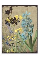 Fresh Meadow Bloom Fine Art Print
