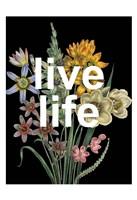 Live Life Framed Print
