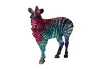 Stripes Of Colors Framed Print