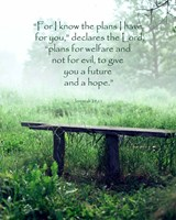 Jeremiah 29:11 For I know the Plans I have for You (Wooden Bench) Framed Print