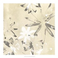 Vellum Flora I Framed Print