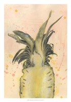 Pineapple Delight II Framed Print