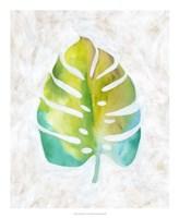 Ocean Side Palms  VI Framed Print