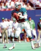 Dan Marino Action Fine Art Print