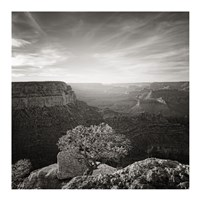 Canyon Evening Fine Art Print