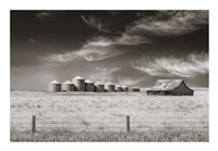 Ranchlands Fine Art Print