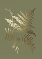 Gold Foil Ferns I on Mid Green - Metallic Foil Fine Art Print