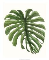 Tropical Breeze Leaves I Framed Print