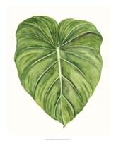 Tropical Breeze Leaves II Framed Print