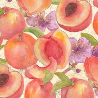 Peach Medley II Fine Art Print