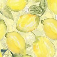 Lemon Medley I Fine Art Print
