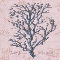 Sea Coral I Fine Art Print
