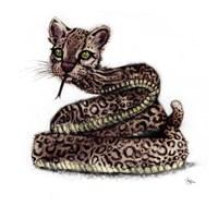 Ocelot Snake Fine Art Print