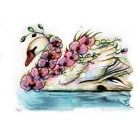 Swan Orchid Fine Art Print