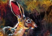 Jack Rabbit Fine Art Print