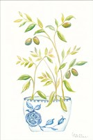 Extend an Olive Branch Fine Art Print