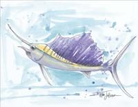 Sailfish Fine Art Print