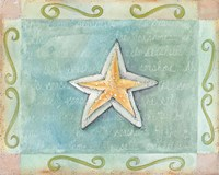 Starfish Seashell Fine Art Print
