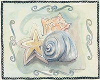 Seashells I Framed Print
