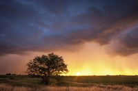 Stormy Sunset Fine Art Print