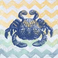 Sea Creatures - Crab Framed Print
