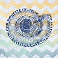 Sea Creatures - Shell I Framed Print