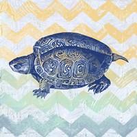 Sea Creatures - Turtle Framed Print