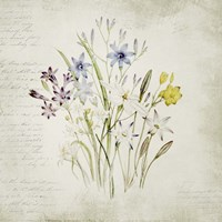 Wild Flowers Three Fine Art Print
