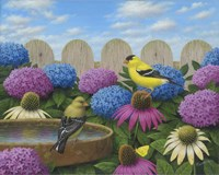 Goldfinches Fine Art Print