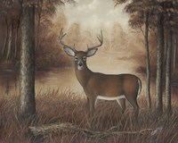 Autumn Buck Fine Art Print