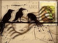 Curious Birds Fine Art Print