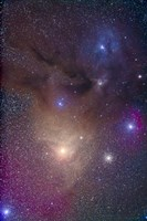 The colorful region around Antares in Scorpius and blue Rho Ophiuchi in Ophiuchus Fine Art Print