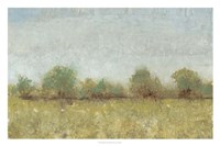Spring Field I Framed Print