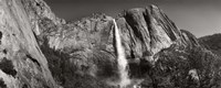 Water falling from rocks in a forest, Bridalveil Fall, Yosemite National Park, California Fine Art Print