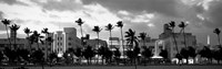 Buildings Lit Up At Dusk, Ocean Drive, Miami Beach, Florida Fine Art Print