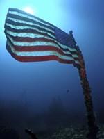 American Flag on a Sunken Ship in Key Largo, Florida Fine Art Print