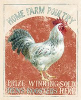 Farm Nostalgia IV Framed Print