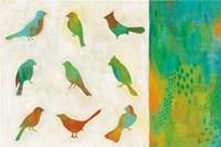 Flight Patterns I Fine Art Print