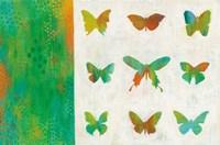 Flight Patterns II Fine Art Print