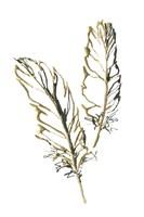 Gilded Barn Owl Feather Framed Print