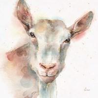 Farm Friends I Fine Art Print