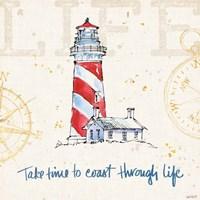 Coastal Life VI Framed Print