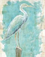 Coastal Egret I Framed Print