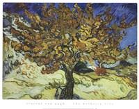 The Mulberry Tree Fine Art Print