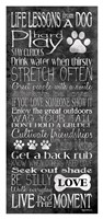 Life Lessons from a Dog Fine Art Print